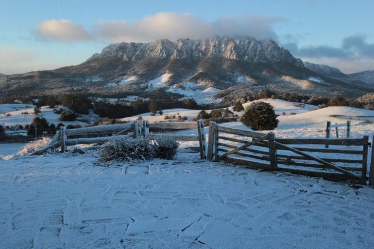 Nest One, Eagles Nest Retreat, West Kentish, Tasmania